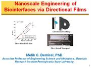 Nanoscale Engineering of Biointerfaces v