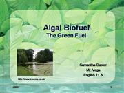 Algal+Biofuel