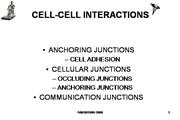 IVMS-Cell Bio- Cell to Cell Interactions
