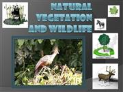 natural+vegetation+and+wildlife