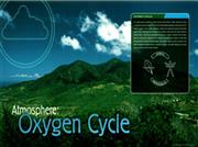 oxygen cycle.odt