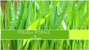 Haiku Poetry PowerPoint 1 Sound