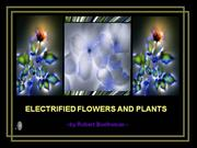 Electrified Flowers and Plants