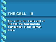 THE CELL   !!!