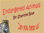 endangered+animals+powerpoint1+