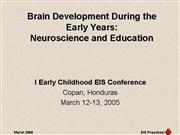 Brain Development During the Early Years